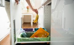 dechets organiques-compost
