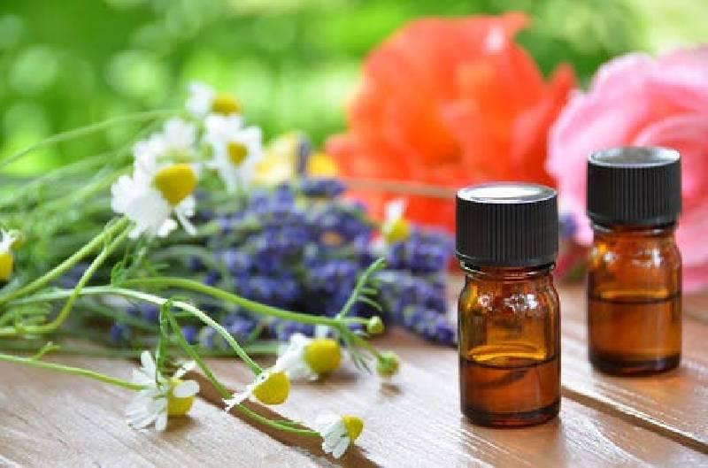 huiles essentielles anti-moustique
